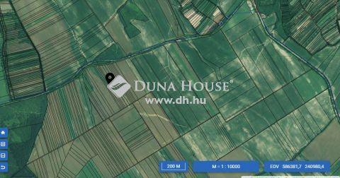 Eladó Mezőgazdasági, Komárom-Esztergom megye, Dad - 071/ 50; 071/52 HRSZ.